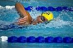 swimming-78112_150